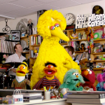 sesame street npr tiny desk concert video 50th anniversary