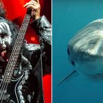 KISS to play concert for sharks