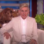 Warner Investigates Ellen DeGeneres Show Workplace Toxic Mean