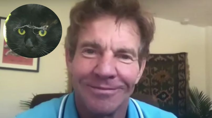 Dennis Quaid Adopts Cat Named Dennis Quaid